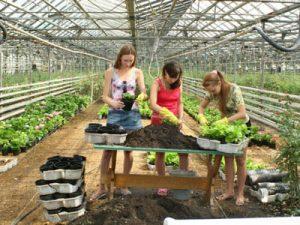 В Омской области будет увеличен размер «подъемных» молодым аграриям