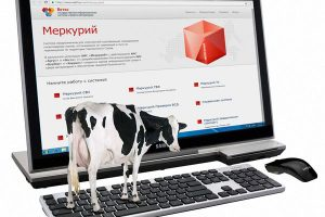 Продукты животноводства в «цифре»