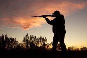 Разыскиваются браконьеры