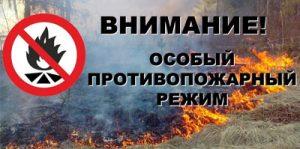 Об установлении особого противопожарного режима на территории Омской области