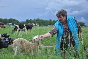 Ждать окончания запрета или развивать альтернативное животноводство?